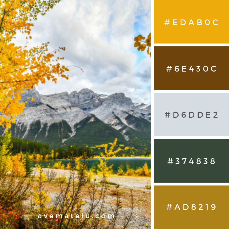 Autumn landscape spray lakes Color Palette #317 - Color combination, Color pallets, Color palettes, Color scheme, Color inspiration, Colour Palettes, Art, Inspiration, Vintage, Bright, Blue, Warm, Dark, Design, Yellow, Green, Grey, Red, Purple, Rustic, Fall, Autumn, Winter, Summer 2019, Nature, Spring, Summer, Flowers, Sunset, Sunrise, Pantone https://avemateiu.com/color-palettes/