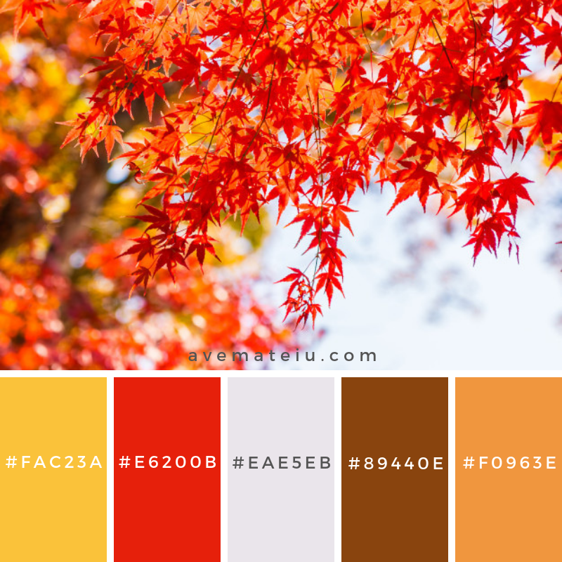 Beautiful red and green maple leaf on tree Color Palette #318 - Color combination, Color pallets, Color palettes, Color scheme, Color inspiration, Colour Palettes, Art, Inspiration, Vintage, Bright, Blue, Warm, Dark, Design, Yellow, Green, Grey, Red, Purple, Rustic, Fall, Autumn, Winter, Summer 2019, Nature, Spring, Summer, Flowers, Sunset, Sunrise, Pantone https://avemateiu.com/color-palettes/
