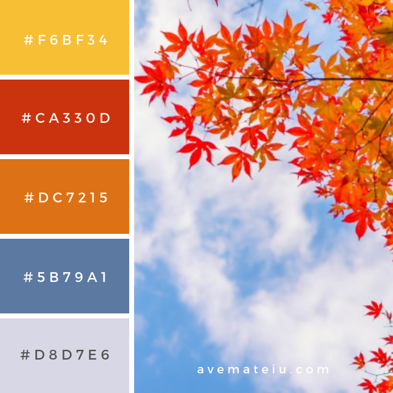 Beautiful colorful autumn leaves Color Palette #319 - Color combination, Color pallets, Color palettes, Color scheme, Color inspiration, Colour Palettes, Art, Inspiration, Vintage, Bright, Blue, Warm, Dark, Design, Yellow, Green, Grey, Red, Purple, Rustic, Fall, Autumn, Winter, Summer 2019, Nature, Spring, Summer, Flowers, Sunset, Sunrise, Pantone https://avemateiu.com/color-palettes/