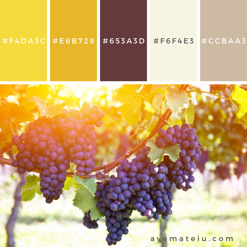 Red grapes on the vine outdoors by sunset Color Palette #332 - Color combination, Color pallets, Color palettes, Color scheme, Color inspiration, Colour Palettes, Art, Inspiration, Vintage, Bright, Blue, Warm, Dark, Design, Yellow, Green, Grey, Red, Purple, Rustic, Fall, Autumn, Winter, Autumn 2019, Nature, Spring, Summer, Flowers, Sunset, Sunrise, Pantone https://avemateiu.com/color-palettes/