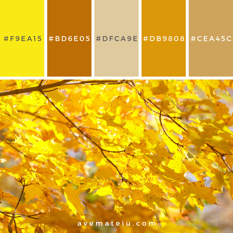 Autumnal leaves Color Palette #324 - Color combination, Color pallets, Color palettes, Color scheme, Color inspiration, Colour Palettes, Art, Inspiration, Vintage, Bright, Blue, Warm, Dark, Design, Yellow, Green, Grey, Red, Purple, Rustic, Fall, Autumn, Winter, Summer 2019, Nature, Spring, Summer, Flowers, Sunset, Sunrise, Pantone https://avemateiu.com/color-palettes/