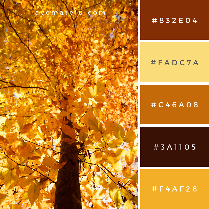 Tree in Fall Color Color Palette #325 - Color combination, Color pallets, Color palettes, Color scheme, Color inspiration, Colour Palettes, Art, Inspiration, Vintage, Bright, Blue, Warm, Dark, Design, Yellow, Green, Grey, Red, Purple, Rustic, Fall, Autumn, Winter, Summer 2019, Nature, Spring, Summer, Flowers, Sunset, Sunrise, Pantone https://avemateiu.com/color-palettes/