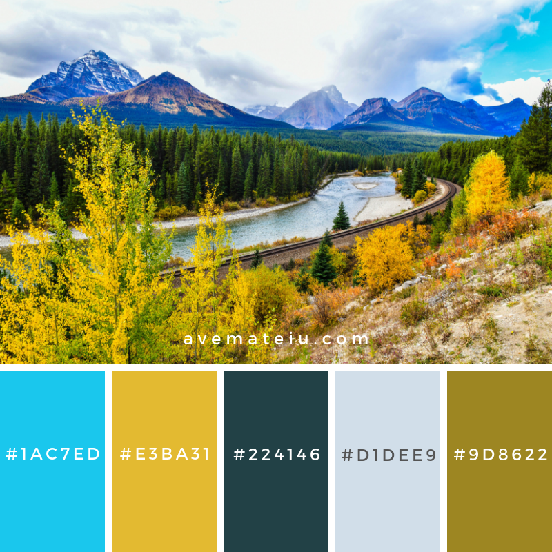 Morant's Curve in Canadian rockies, Banff National Park, Canada Color Palette #326 - Color combination, Color pallets, Color palettes, Color scheme, Color inspiration, Colour Palettes, Art, Inspiration, Vintage, Bright, Blue, Warm, Dark, Design, Yellow, Green, Grey, Red, Purple, Rustic, Fall, Autumn, Winter, Summer 2019, Nature, Spring, Summer, Flowers, Sunset, Sunrise, Pantone https://avemateiu.com/color-palettes/