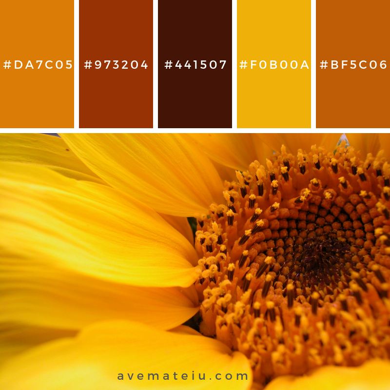 Sunflower Close up Color Palette #328 - Color combination, Color pallets, Color palettes, Color scheme, Color inspiration, Colour Palettes, Art, Inspiration, Vintage, Bright, Blue, Warm, Dark, Design, Yellow, Green, Grey, Red, Purple, Rustic, Fall, Autumn, Winter, Summer 2019, Nature, Spring, Summer, Flowers, Sunset, Sunrise, Pantone https://avemateiu.com/color-palettes/