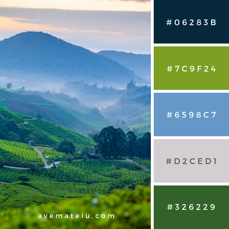Cameron Highlands tea plantation in a misty morning Color Palette #329 - Color combination, Color pallets, Color palettes, Color scheme, Color inspiration, Colour Palettes, Art, Inspiration, Vintage, Bright, Blue, Warm, Dark, Design, Yellow, Green, Grey, Red, Purple, Rustic, Fall, Autumn, Winter, Summer 2019, Nature, Spring, Summer, Flowers, Sunset, Sunrise, Pantone https://avemateiu.com/color-palettes/