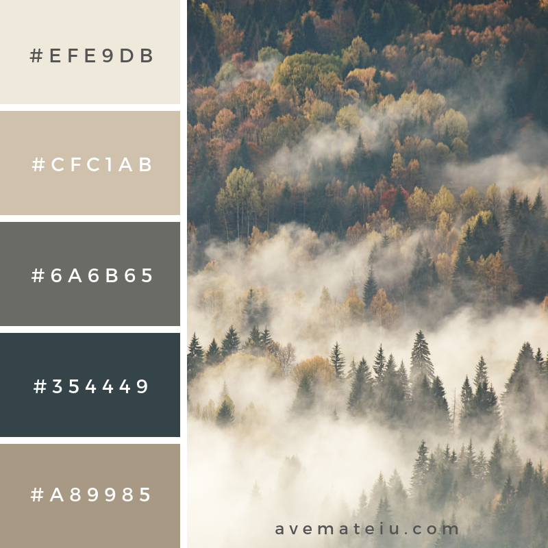 View of misty fog mountains in autumn Color Palette #331 - Color combination, Color pallets, Color palettes, Color scheme, Color inspiration, Colour Palettes, Art, Inspiration, Vintage, Bright, Blue, Warm, Dark, Design, Yellow, Green, Grey, Red, Purple, Rustic, Fall, Autumn, Winter, Autumn 2019, Nature, Spring, Summer, Flowers, Sunset, Sunrise, Pantone https://avemateiu.com/color-palettes/