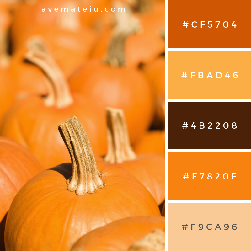 Pumpkins at Market Color Palette #345 - Color combination, Color pallets, Color palettes, Color scheme, Color inspiration, Colour Palettes, Art, Inspiration, Vintage, Bright, Blue, Warm, Dark, Design, Yellow, Green, Grey, Red, Purple, Rustic, Fall, Autumn, Winter, Autumn 2019, Nature, Spring, Summer, Flowers, Sunset, Sunrise