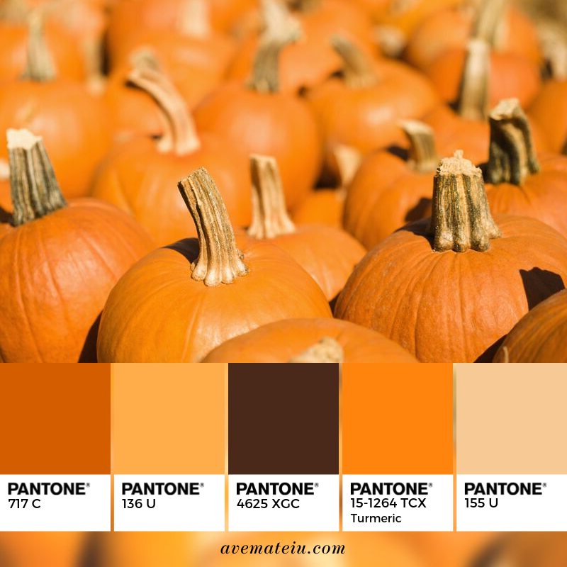 Pumpkins at Market Pantone Color Palette #345 - Color combination, Color pallets, Color palettes, Color scheme, Color inspiration, Colour Palettes, Art, Inspiration, Vintage, Bright, Blue, Warm, Dark, Design, Yellow, Green, Grey, Red, Purple, Rustic, Fall, Autumn, Winter, Autumn 2019, Nature, Spring, Summer, Flowers, Sunset, Sunrise