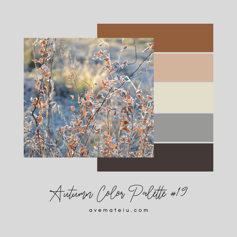 Autumn Color Palette 19 - Color combination, Color pallets, Color palettes, Color scheme, Color inspiration, Colour Palettes, Art, Inspiration, Vintage, Bright, Background, Warm, Dark, Design, Yellow, Green, Orange, Red, Purple, Rustic, Fall, Autumn, Thanksgiving, Autumn 2019, Nature, Seasonal, Wood, Wooden, Season, Natural