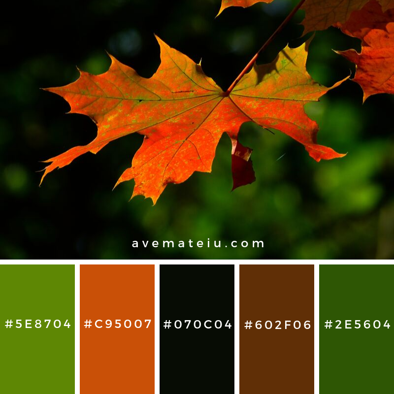 Autumn Leaves Color Palette #346 - Color combination, Color pallets, Color palettes, Color scheme, Color inspiration, Colour Palettes, Art, Inspiration, Vintage, Bright, Blue, Warm, Dark, Design, Yellow, Green, Grey, Red, Purple, Rustic, Fall, Autumn, Winter, Autumn 2019, Nature, Spring, Summer, Flowers, Sunset, Sunrise