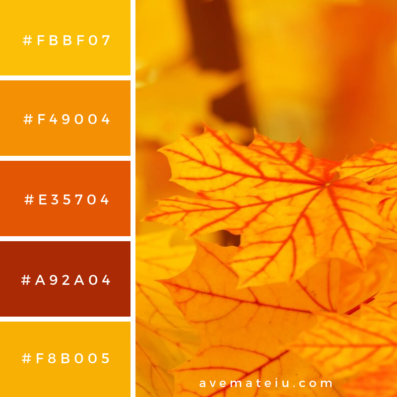 Autumn Leaves Color Palette #347 - Color combination, Color pallets, Color palettes, Color scheme, Color inspiration, Colour Palettes, Art, Inspiration, Vintage, Bright, Blue, Warm, Dark, Design, Yellow, Green, Grey, Red, Purple, Rustic, Fall, Autumn, Winter, Autumn 2019, Nature, Spring, Summer, Flowers, Sunset, Sunrise