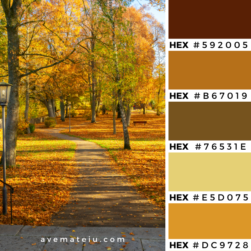 Vibrant yellow fall trees in park with walking pass at sunny day Color Palette 353 - Color combination, Color pallets, Color palettes, Color scheme, Color inspiration, Colour Palettes, Art, Inspiration, Vintage, Bright, Background, Warm, Dark, Design, Yellow, Green, Orange, Red, Purple, Rustic, Fall, Autumn, Thanksgiving, Autumn 2019, Nature, Seasonal, Wood, Wooden, Season, Natural