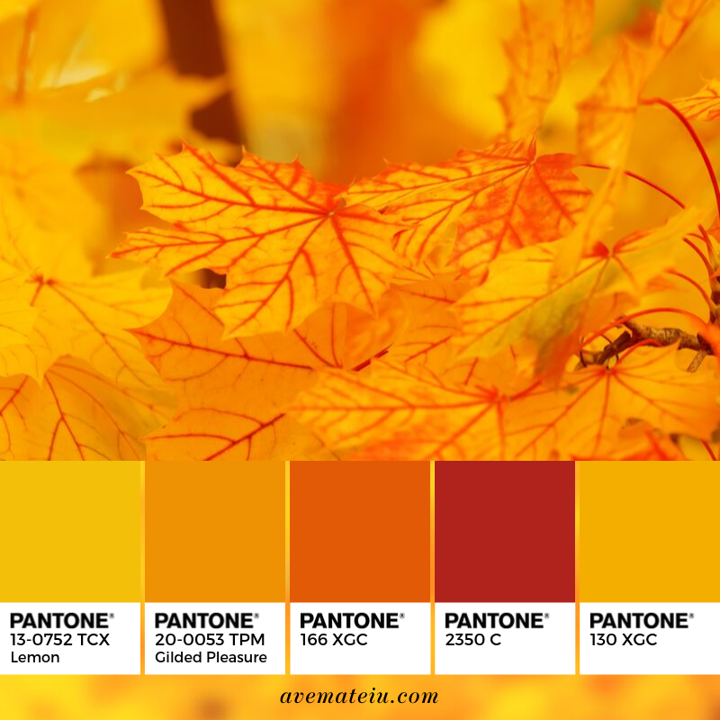 Autumn Leaves Pantone Color Palette #347 - Color combination, Color pallets, Color palettes, Color scheme, Color inspiration, Colour Palettes, Art, Inspiration, Vintage, Bright, Blue, Warm, Dark, Design, Yellow, Green, Grey, Red, Purple, Rustic, Fall, Autumn, Winter, Autumn 2019, Nature, Spring, Summer, Flowers, Sunset, Sunrise
