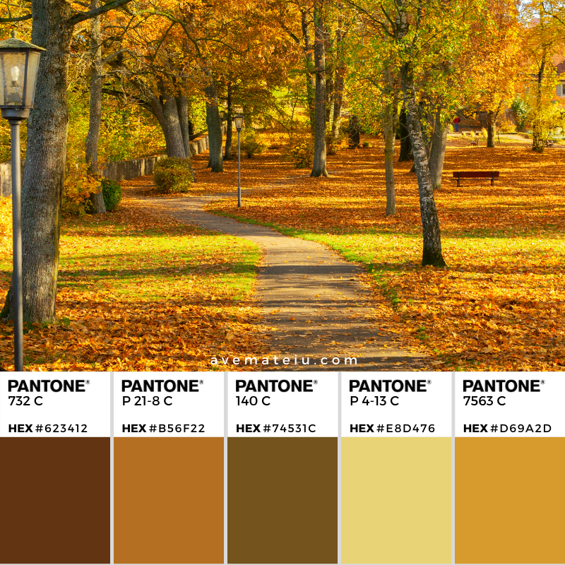 Vibrant yellow fall trees in park with walking pass at sunny day Pantone Color Palette 353 - Color combination, Color pallets, Color palettes, Color scheme, Color inspiration, Colour Palettes, Art, Inspiration, Vintage, Bright, Background, Warm, Dark, Design, Yellow, Green, Orange, Red, Purple, Rustic, Fall, Autumn, Thanksgiving, Autumn 2019, Nature, Seasonal, Wood, Wooden, Season, Natural