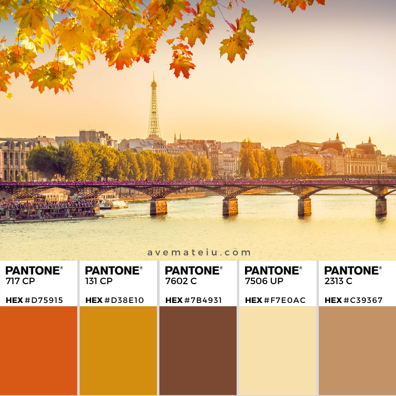 Pont des Arts and Seine river at sunny autumn sunset in Paris, France Pantone Color Palette 354 - Color combination, Color pallets, Color palettes, Color scheme, Color inspiration, Colour Palettes, Art, Inspiration, Vintage, Bright, Background, Warm, Dark, Design, Yellow, Green, Orange, Red, Purple, Rustic, Fall, Autumn, Thanksgiving, Autumn 2019, Nature, Seasonal, Wood, Wooden, Season, Natural
