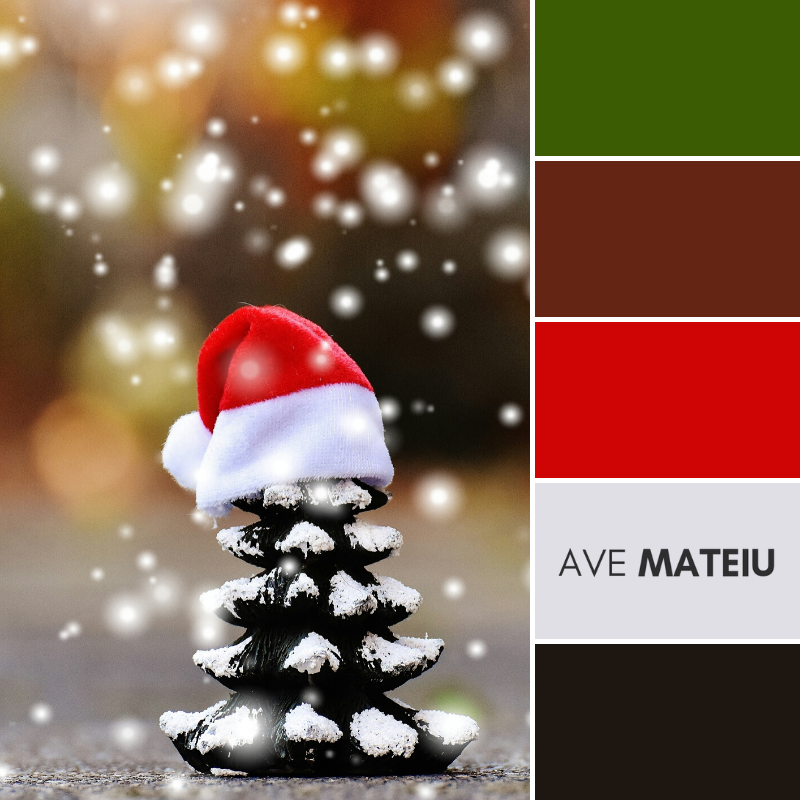 Conifer Cone Wearing Christmas Hat Color Palette 365 - Color combination, Color pallets, Color palettes, Color scheme, Color inspiration, Colour Palettes, Art, Inspiration, Vintage, Bright, Background, Warm, Dark, Design, Yellow, Green, Orange, Red, Purple, Rustic, Fall, Christmas, Thanksgiving, Christmas 2019, Nature, Seasonal, Wood, Wooden, Season, Natural