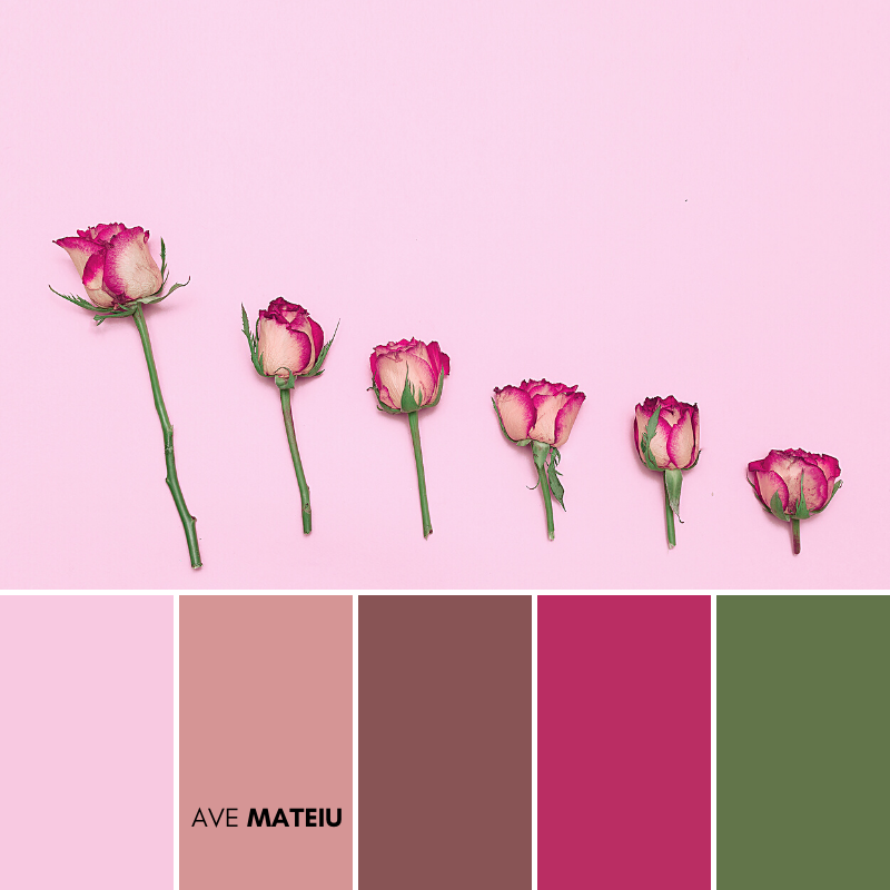 Minimalist Creative Roses Color Palette #378 - Summer 2020, color palette, color palettes, colour palettes, color scheme, color inspiration, color combination, art tutorial, collage, digital art, canvas painting, wall art, home painting, photography, weddings by color, inspiration, vintage, wallpaper, background, rustic, seasonal, season, natural, nature