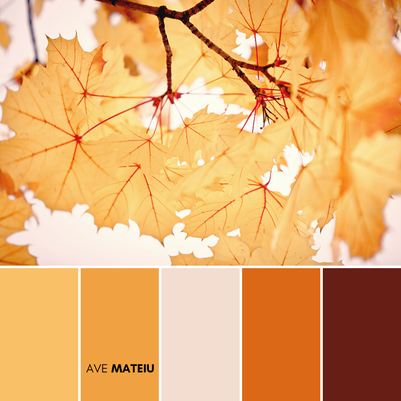 Vivid autumn colors created by nature on maple leaves Color Palette #382 - Fall Autumn 2020, color palette, color palettes, colour palettes, color scheme, color inspiration, color combination, art tutorial, collage, digital art, canvas painting, wall art, home painting, photography, weddings by color, inspiration, vintage, wallpaper, background, rustic, seasonal, season, natural, nature