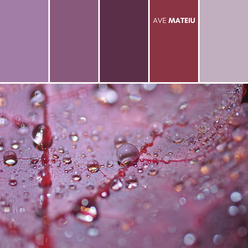 Macro drenched autumn purple leaf, minimalist Color Palette #384 - Fall Autumn 2020, color palette, color palettes, colour palettes, color scheme, color inspiration, color combination, art tutorial, collage, digital art, canvas painting, wall art, home painting, photography, weddings by color, inspiration, vintage, wallpaper, background, rustic, seasonal, season, natural, nature